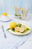 Bowl with fresh lime and lemon and two glasses of lemonade Royalty Free Stock Photo