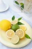 Bowl with fresh lime and lemon and two glasses of lemonade Royalty Free Stock Image