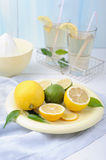 Bowl with fresh lime and lemons, squeezer and glasses of lemonade Stock Photos