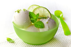 Bowl of fresh lime sorbet. Decorated with lime and mint royalty free stock photography