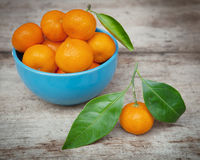 Bowl of fresh mandarins Stock Images