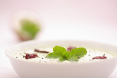Bowl of fresh mint chutney,selective focus photograph. Royalty Free Stock Images