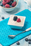 Bowl of fresh mixed berries and yogurt Stock Images