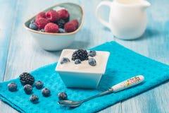 Bowl of fresh mixed berries and yogurt Stock Photography