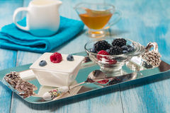 Bowl of fresh mixed berries and yogurt Royalty Free Stock Photography