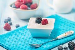 Bowl of fresh mixed berries and yogurt Stock Image