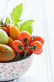 Bowl of fresh mixed tomatoes Royalty Free Stock Image