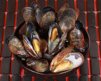 Bowl of fresh mussels Stock Images