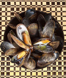 Bowl of fresh mussels Stock Photos