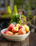 Bowl of fresh picked apples Royalty Free Stock Photography