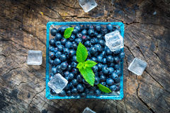 Bowl of  fresh picked blueberries Stock Photography