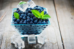 Bowl of  fresh picked blueberries Royalty Free Stock Photo
