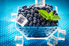 Bowl of  fresh picked blueberries Royalty Free Stock Images