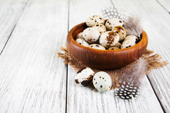 Bowl with fresh quail eggs Royalty Free Stock Photography