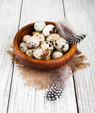 Bowl with fresh quail eggs Stock Images