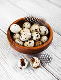 Bowl with fresh quail eggs Royalty Free Stock Photo