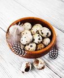 Bowl with fresh quail eggs Royalty Free Stock Image