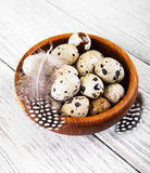 Bowl with fresh quail eggs Royalty Free Stock Images