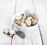 Bowl with fresh quail eggs Stock Image