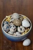 Bowl with fresh quail eggs, top view Royalty Free Stock Photography
