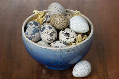 Bowl with fresh quail eggs on wooden table. Close-up Stock Photography