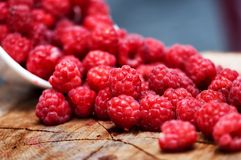Bowl with fresh raspberries from local farm Royalty Free Stock Image