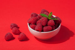 Bowl with fresh raspberries and mint leaves on a red background. Minimal concept. hard light Stock Image