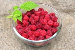 Bowl of fresh raspberry. On sacking background Stock Photos