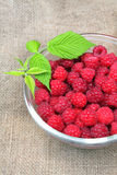 Bowl of fresh raspberry. On sacking background Stock Images