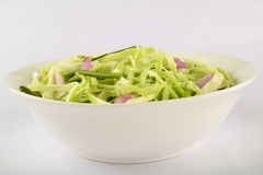 Bowl of fresh raw cabbage salad. Selective focus photograph Royalty Free Stock Photos