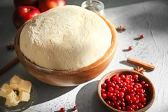 Bowl with fresh raw dough and cranberries. On table Stock Photography