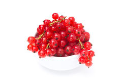 Bowl of fresh red currant isolated on white Royalty Free Stock Image