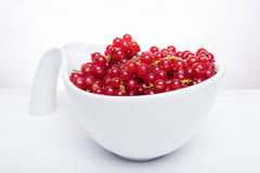 Bowl of fresh red currants Royalty Free Stock Images