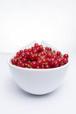 Bowl of fresh red currants Royalty Free Stock Photography
