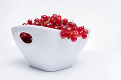 Bowl of fresh red currants Royalty Free Stock Photos
