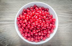 Bowl with fresh redcurrant on the wooden table Stock Photography
