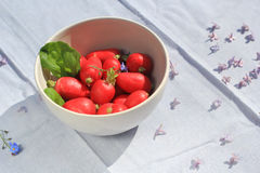 A bowl of fresh ripe radish, close up. A bowl of fresh ripe radish,  close up Stock Images