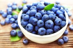 Bowl of fresh ripe sweet juicy blueberries with leaves royalty free stock photography