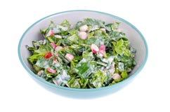 Bowl with fresh salad greens and radish. Studio Photo Royalty Free Stock Images