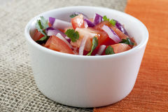 Bowl of Fresh Salsa. Fresh salsa made with tomatoes, red onions and cilantro stock photography