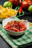 Bowl of fresh salsa with tortilla chips Royalty Free Stock Images