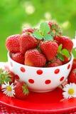 Bowl of fresh strawberries royalty free stock image