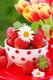 Bowl of fresh strawberries stock photography