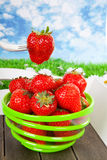 Bowl with fresh strawberries on tray Royalty Free Stock Images