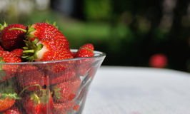 Bowl with fresh strayberry Royalty Free Stock Photo