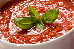 Bowl of fresh tomato puree Stock Images