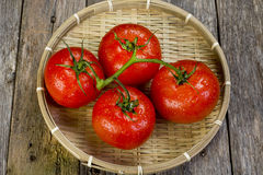 Bowl of fresh tomatoes Royalty Free Stock Image