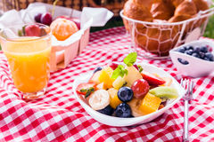 Bowl of fresh tropical fruit salad at a picnic Stock Image