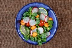 Bowl of fresh vegetable salad Stock Photo