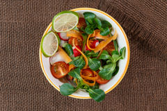 Bowl of fresh vegetable salad Stock Images